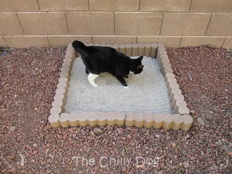 zen-garden-litter-box2B2